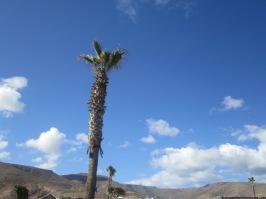 Lanzarote Arrieta