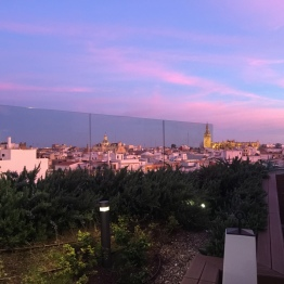 Gourmet Experience Seville view