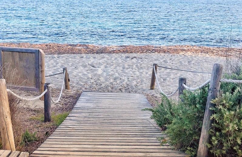 Gecko beach Formentera